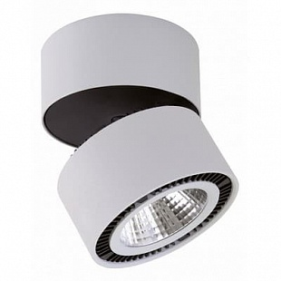 Спот  LIGHTSTAR FORTE MURO LED 213839